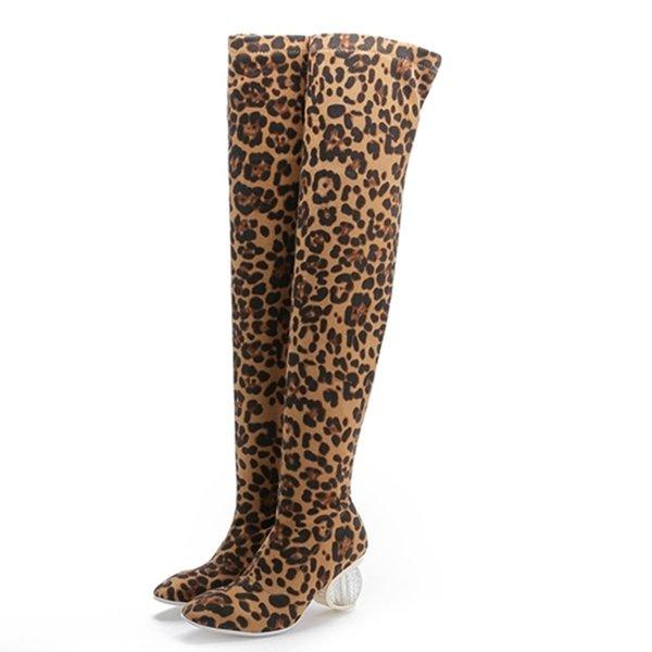 pu dentro do leopardo