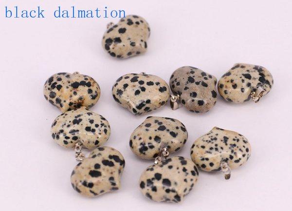 schwarze dalmation