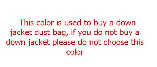 사진 색상