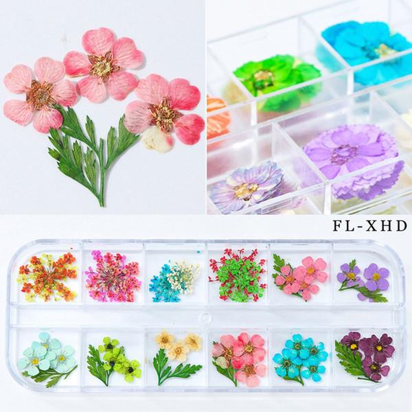 Mix 12 Renkler Doğal Kurutulmuş Çiçekler DIY Nail Art Çiçek Süslemeleri Nail Art Süslemeleri Polonya Aracı