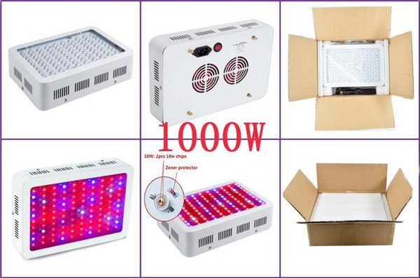 100pcs 1000w Full spectrum