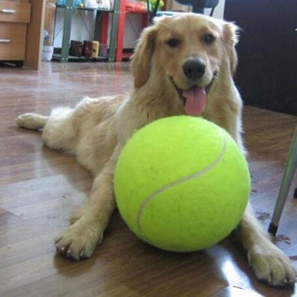 Toptan Satış - Toptan-24CM Büyük Şişme Tenis Topu Dev Büyük Dev Pet Köpek Yavru Tenis Topu Atıcı Chucker Launcher Oyuncak Spor Tenis Topları + B Oyna