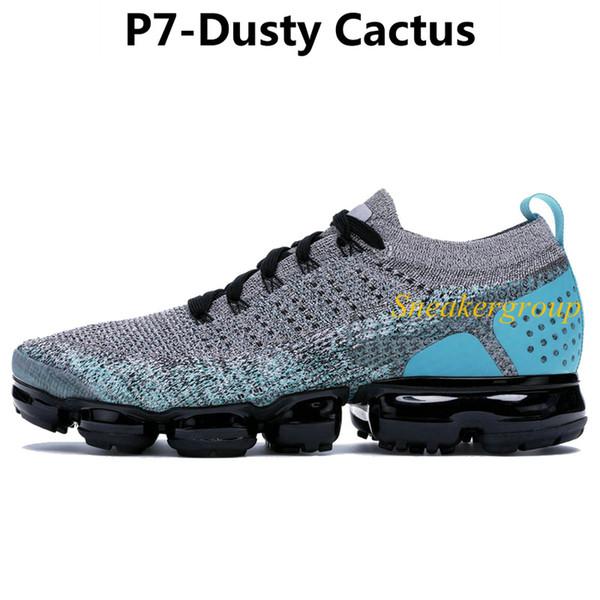 P7-Пыльный Кактус