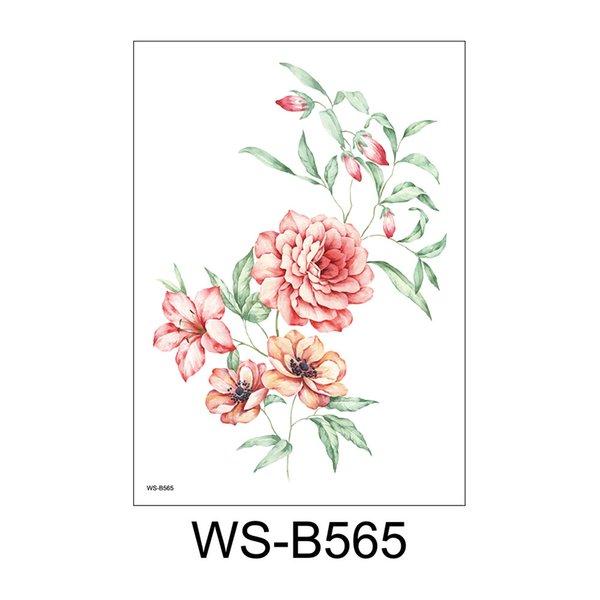 WS-B565