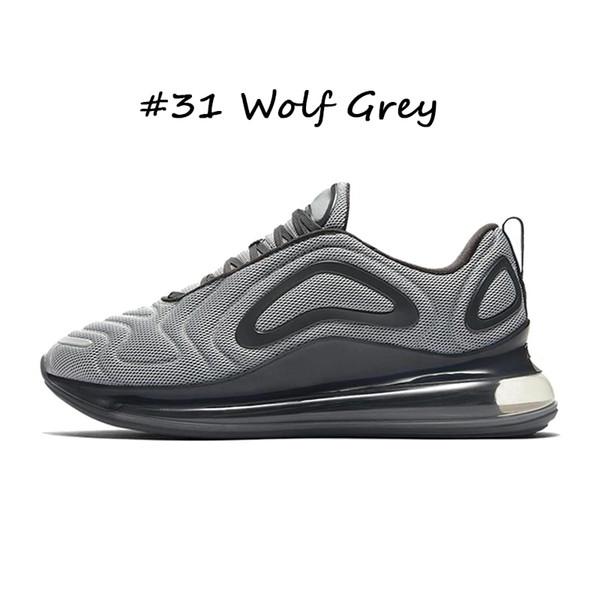 #31 Wolf Grey