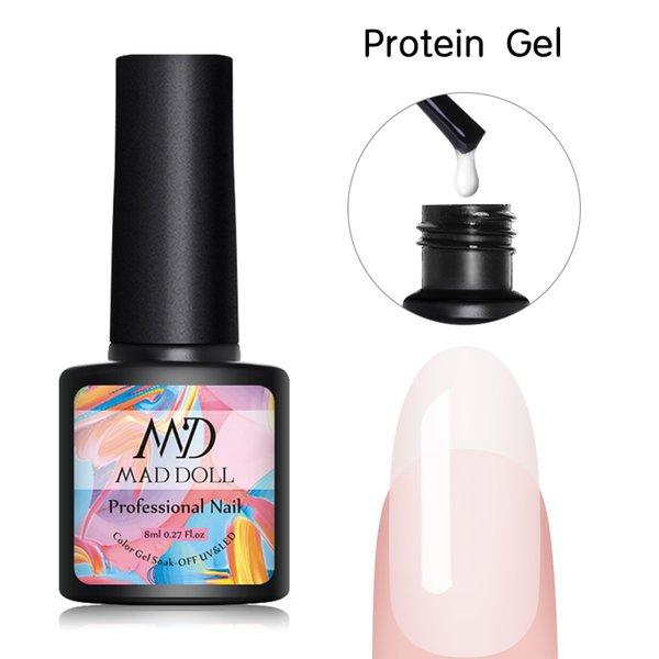 단백질 젤