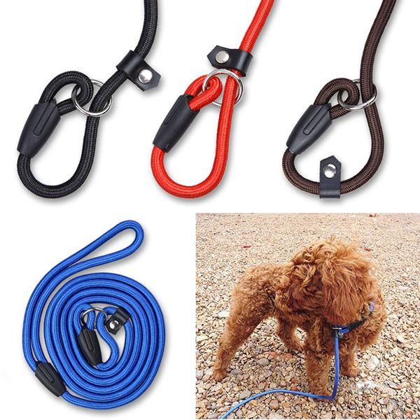 Haustier Hund Nylon Verstellbarer Kragen Trainingsschlaufe Schlupfleine Seil Leine Kleine Größe Rot Blau Schwarz Farbe