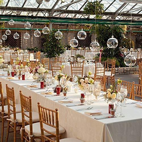 Paket von 24 Klarglas Kugeln Terrarium hängenden Kerzenhalter aus Glas 8 CM Teelichthalter Verwendung für saftige Gartenarbeit oder Hochzeit Decorati