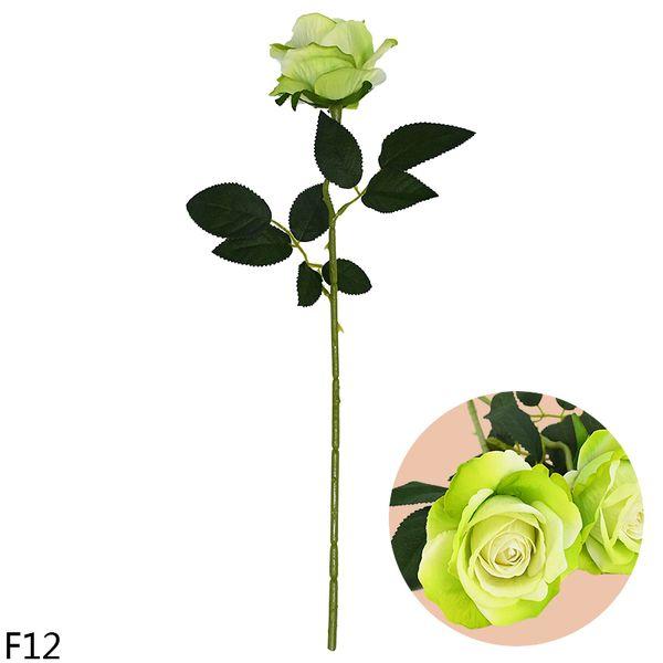 F12-green