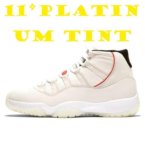 11 platinum tint