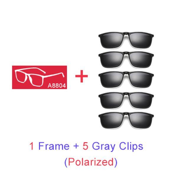 1 Frame 5 graue Clips