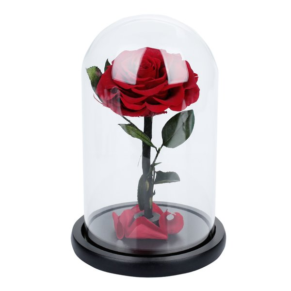 Conservado Flor fresca Flor eterna Cristal Cubierta de cristal rosa Decoración de boda fresca Decoración floral Rosas rojas Fiesta