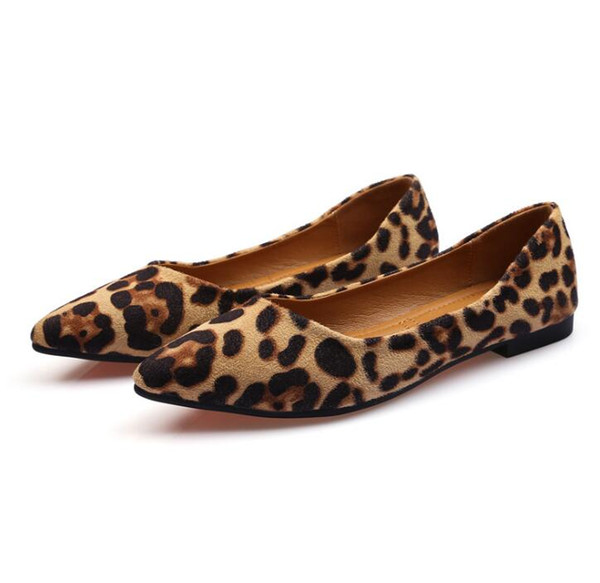 222as pic_brown leopard_5.