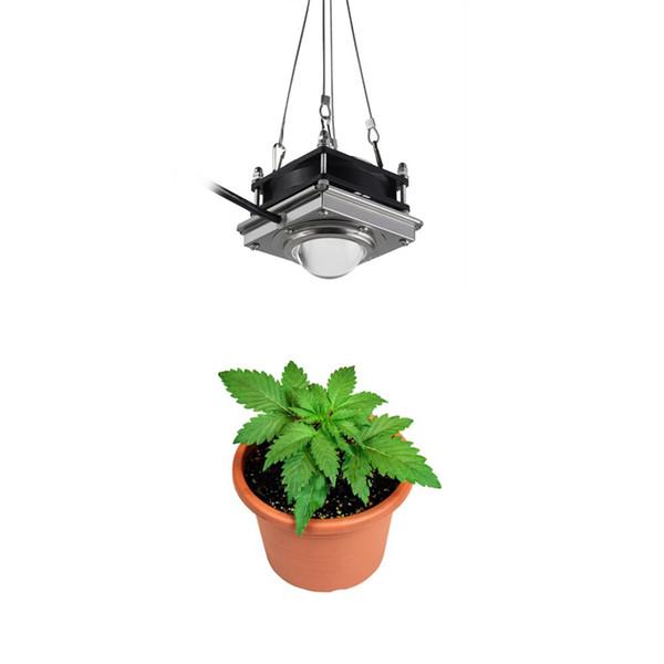 2019 Nuova lampada da coltivazione a LED COB 85-265V 200W a spettro completo ha condotto la lampada da coltivazione per piante da interno per piante da crescita fiore