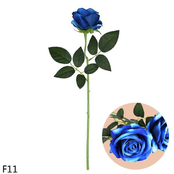 F11-blue