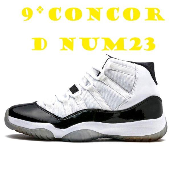 9 Concord NUM23