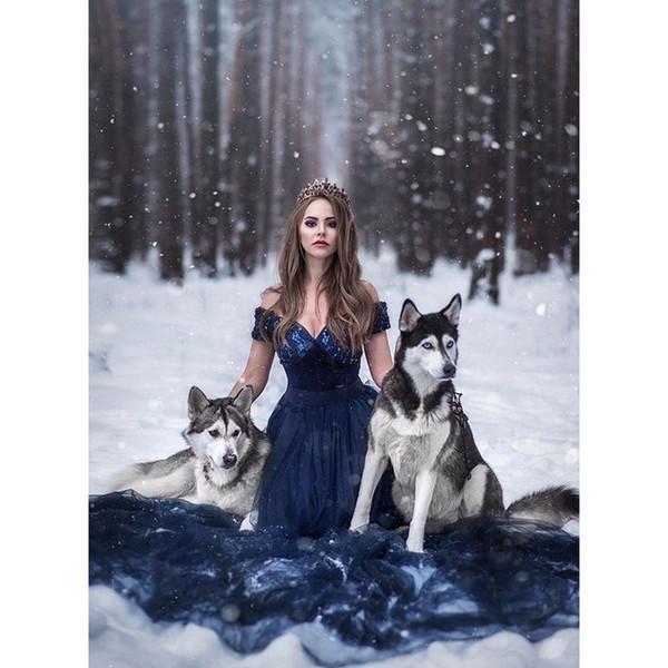 3D Diy Diamond Painting, Princess Girl Wolf, Diamond Embroidery, Christmas Decoration, Mosaic, Rhinestone Painting, Cross Stitch