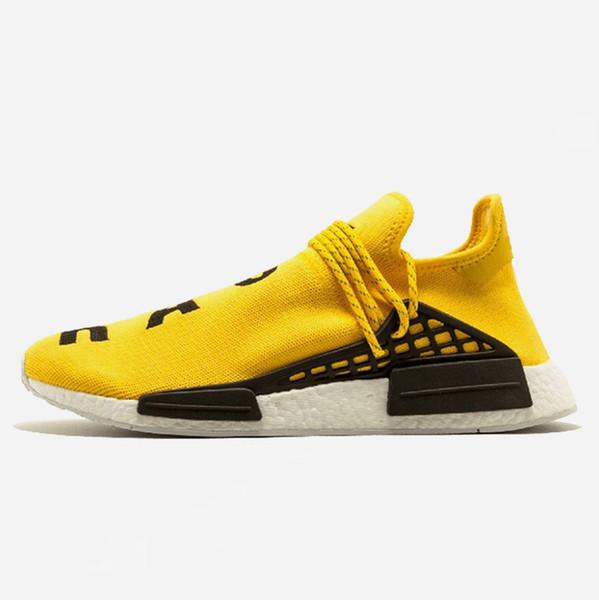 B1 36-45 Yellow