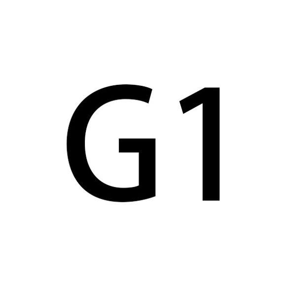 2.0CM الذهب G الإبزيم 124