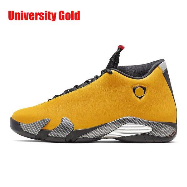Università dell'oro
