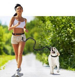 1 Pc Wholesale Nylon pet dog leash running jogging reflective puppy dog sport lead adjustable walking leash candy colors