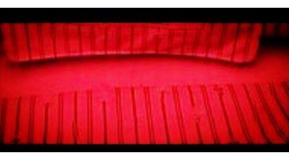 kırmızı kahverengi ekose