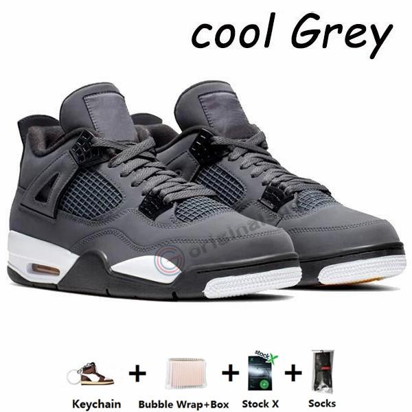 4s-Cool Gray