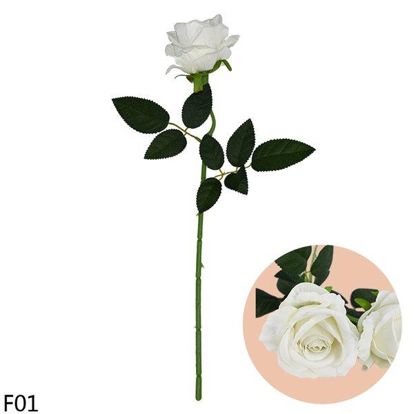 F01-white