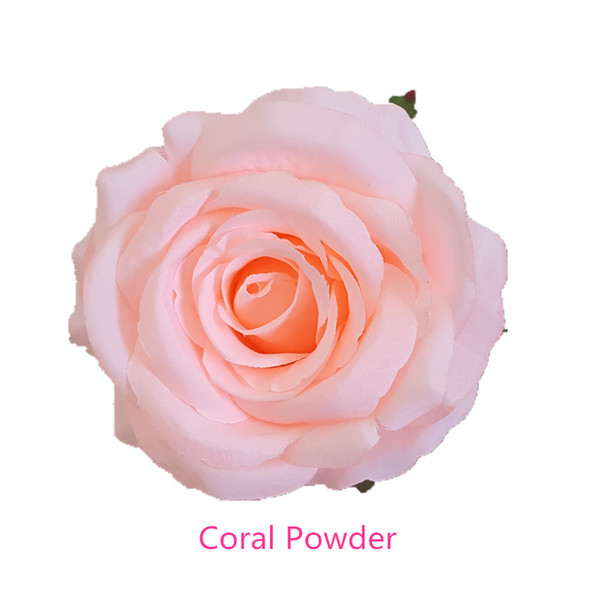 Coral Powder