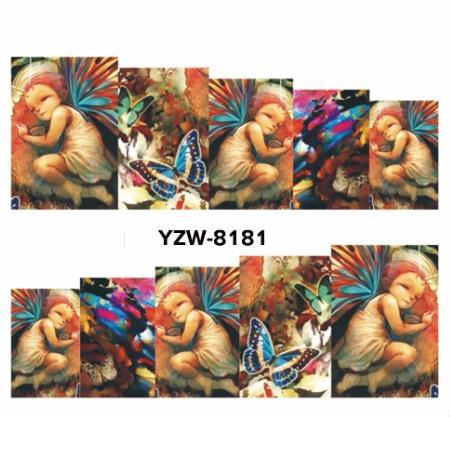 YZW8181