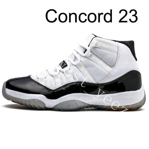 14 Concord alta 23