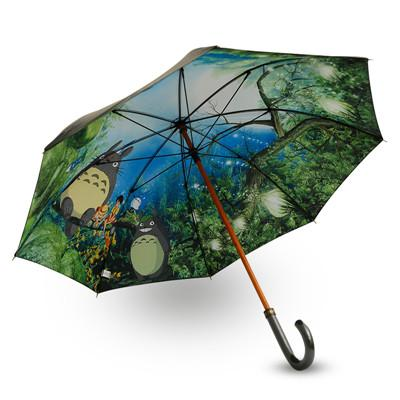 Longue Totoro Umbrella Chine