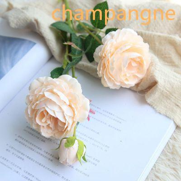 champangne