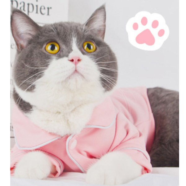 2019 Estrella Pet Pajamas Clothes Nighty Dresses Pretty Cat Shirts Cat & Kitten Clothes Free Shipping OEM is Welcome