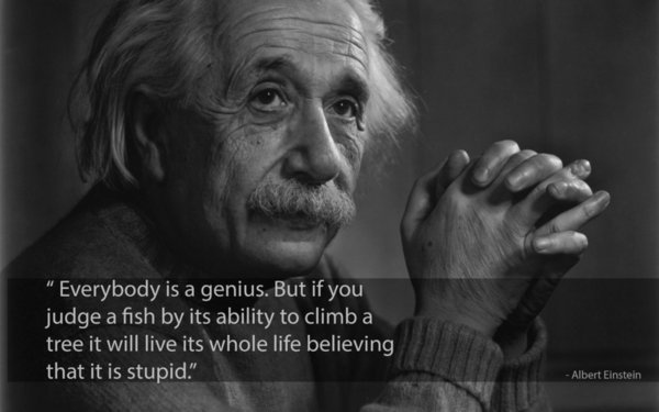 Albert Einstein Quotes Cool Inspirational wall decor Art Silk Print Poster 938