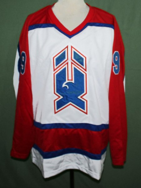 BERNIE NICHOLLS NEW HAVEN NIGHTHAWKS AHL RETRO HOCKEY JERSEY Embroidery Stitched Customize any size and name
