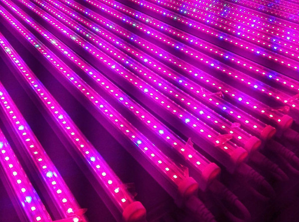 Free Ship 1 T5 Led Grow Light T8 Tube Ac85 265v For Greenhouse Hydroponics Plant Flowering Tubes Bulbs Lights Led Grow Bulbs 1000 Watt Grow Lights