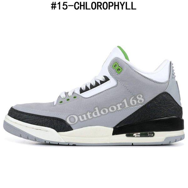#15-CHLOROPHYLL