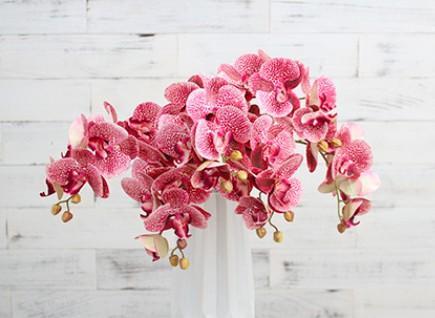 Artificielle Papillon Phalaenopsis Orchidée Branche De Fleur De Mariage Décor À La Maison Tissu Fleur Faux Orchidée Pour Vase Table Fleur Hôtel Accessoires de Caméra
