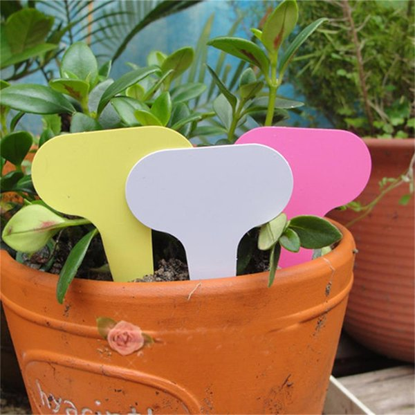 garden ball 50pcs 6 x10cm Plastic Plant T-type Tags Markers Nursery Garden Labels Mark Tools label