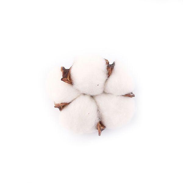 Çiçek Pamuk Ev Noel Kurutulmuş 6Pcs Doğal Pamuk Başkanı Yapay Çiçek Doğal Dekor Diy Garland Çelenk W Malzemeleri