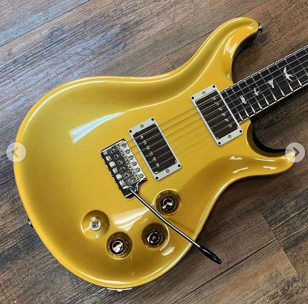 Top venda guitarras personalizadas DGT David Grissom Trem assinatura guitarra elétrica pássaro embutimentos