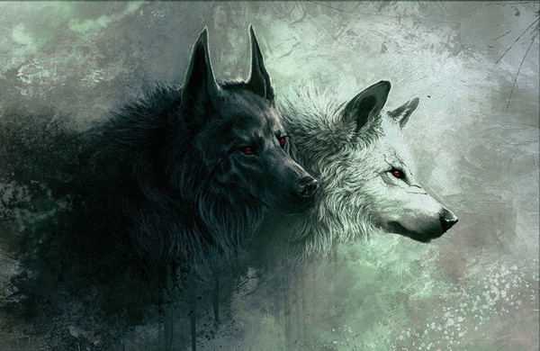 2019 Black Wolf White Wolf Abstract Hunting Animal Art Silk Print Poster 24x36inch60x90cm 088 From Chuy8988 10 93 Dhgate Com