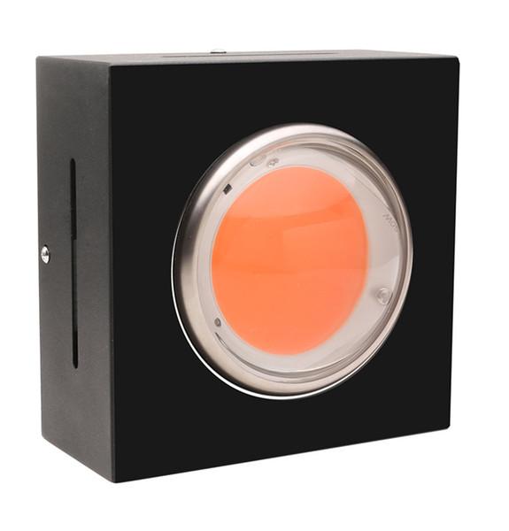Fábrica de atacado DIY LED crescer kits de luz 200 W com efeito de estufa espectro completo hidropônico COB LED crescer luz