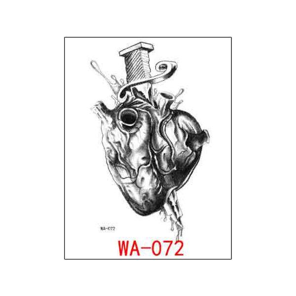 WA-072