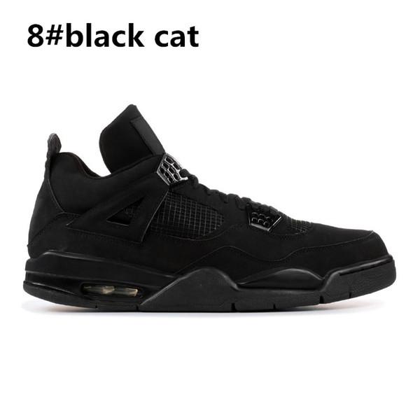 8 chat noir