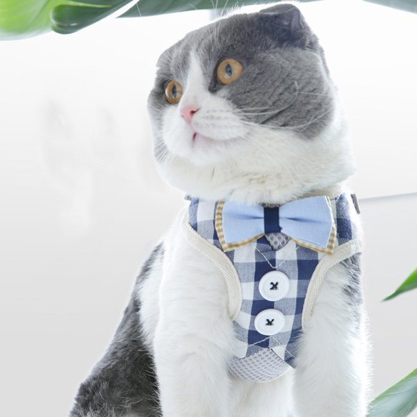 Breathable Cat Harness and Leash Set Puppy Kitten Mesh Vest Adjustable Harness Leads Pet Clothes For Small Dogs Yorkies Pug 20