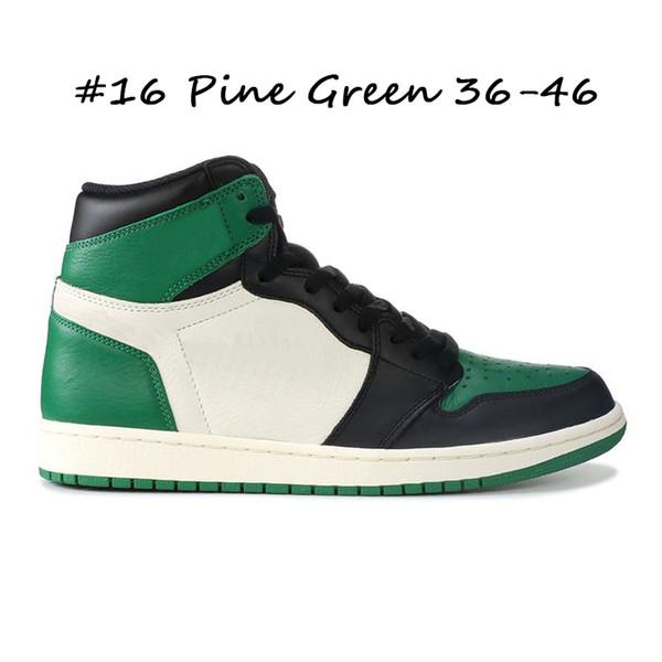 # 16 الصنوبر الأخضر 36-46
