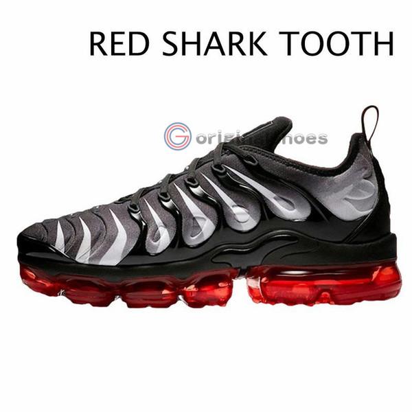 Diente 30-RED SHARK