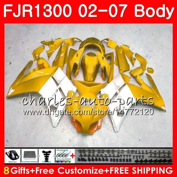 Kit für YAMAHA FJR1300A FJR-1300 2001 2002 2003 2004 2005 2006 2007 120HM.69 FJR 1300 FJR1300 01 02 03 04 05 06 07 Gold-silbrig heiße Verkleidungen